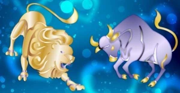 Гороскоп совместимости Льва и Тельца