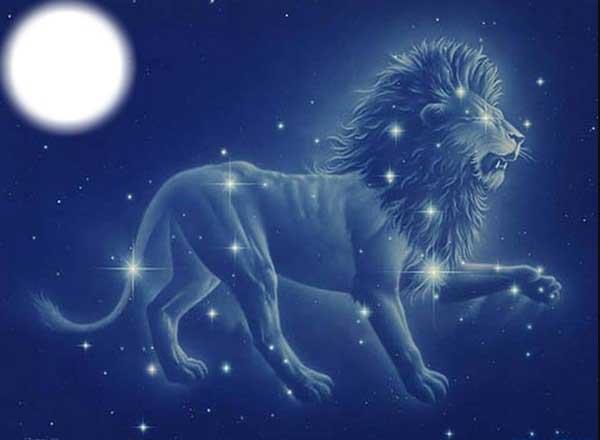 Интересные факты о Львах по знаку Зодиака