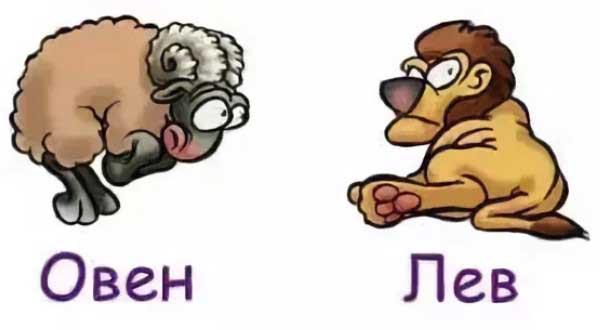 Совместимость Льва и Овна по гороскопу