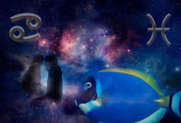 Совместимость Рака и Рыб по гороскопу