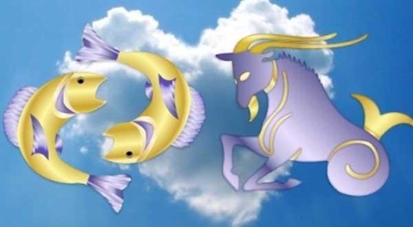 Совместимы ли Рыбы с Козерогами