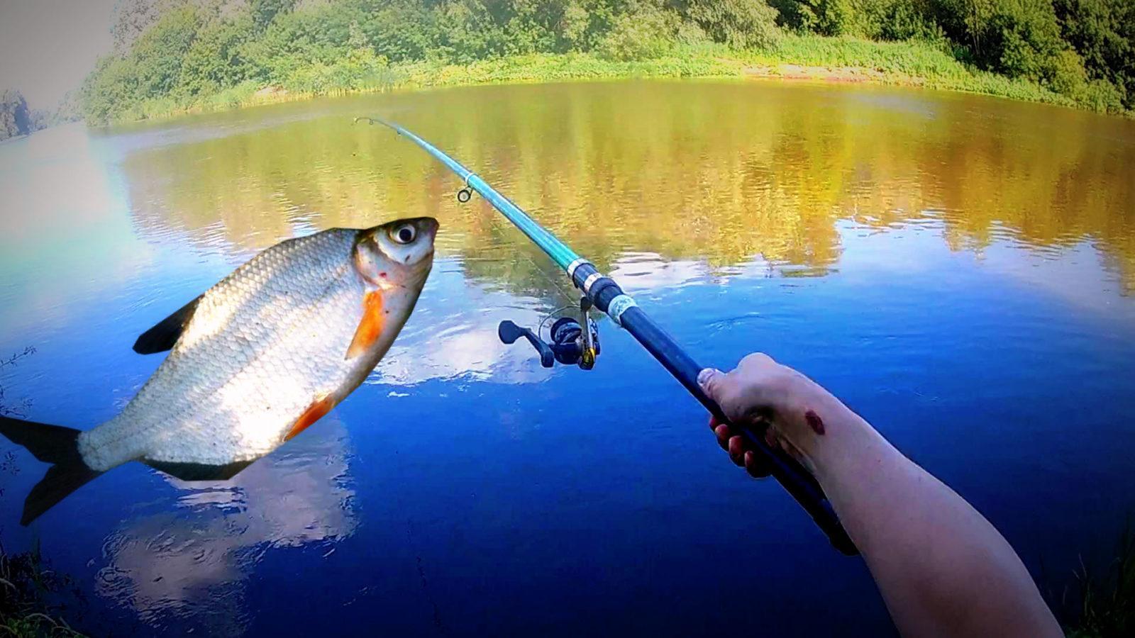 Благоприятные дни для рыбалки в  феврале 2021