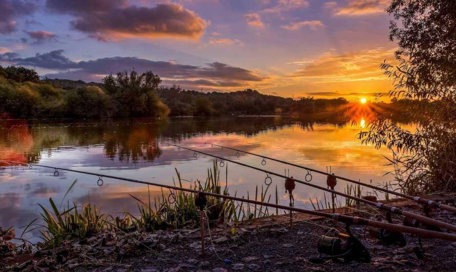 Благоприятные дни для рыбалки в июне 2021